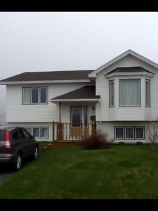 3 bedroom house in Mt.Pearl