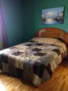 OCEAN FRONT PROPERTY IN SPANIARDS BAY!!!! St. John's Newfoundland image 17