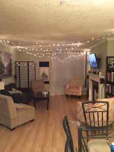 Roommate Wanted in central condo