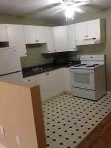 2 bedroom basement apartment available immediately St. John's Newfoundland image 6