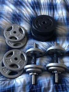 BENCH ET DUMBBLES
