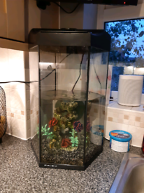 Large Fish Tank For Sale Aquariums Gumtree
