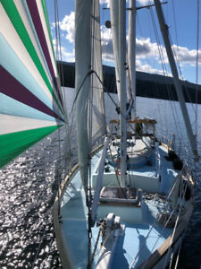 URGENT Crew wanted, sail Victoria - San Francisco, early August