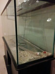 110 Gallon tank + cover glass + light box + wood stand
