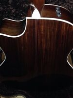 Taylor 416ce limited edition (rosewood!!)