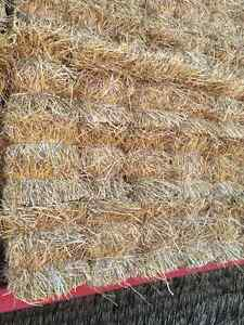 Small sqaure straw for erosion control London Ontario image 4