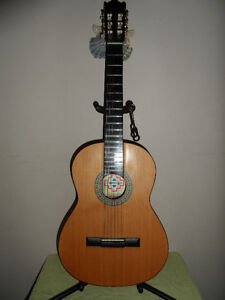 New Durango Full-Size (4/4) Acoustic Guitar With Case and Stand