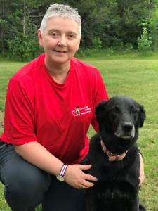 Dog training ~ Canadian Canine Training Academy