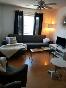 Summer sublet wanted