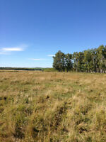 Rural residential 5 acre parcel for sale 45 mins. NW of Calgary