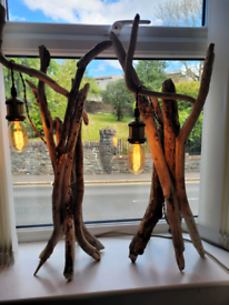 Driftwood table/bedside Lamps