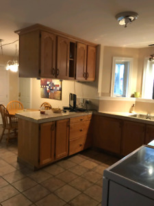 [URGENT] large 2 bed 2 bath + den. North end. Cat friendly