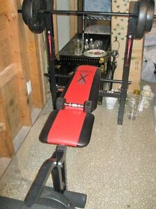 WEIGHT WORK OUT BENCH
