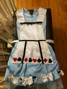 Alice and wonderland costume size small