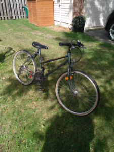 Womens Hybrid Bike | New and Used Bikes for Sale Near Me in