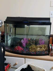 36 gl fish tank with all accessories