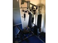 Multigym for sale inc 2 sets Dumbells and stepper