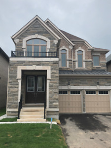 New Home For Rent In Brampton- Williams Parkway and Chingcousy!