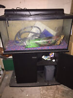 Fish tank for sale with stand