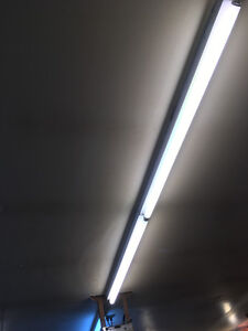 Fluorescent Fixtures and Bulbs