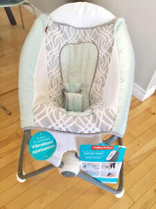 Brand New Fisher Price Rock n Play