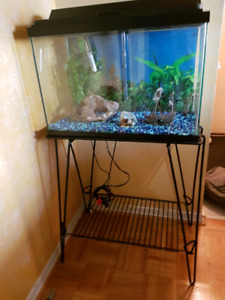 Complete Fishtank set with Stand, decor, food, maintenance