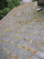 POWER WASHING and GUTTER CLEANING