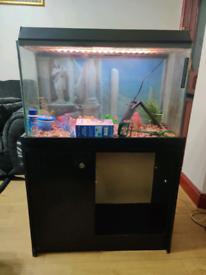 @# PEAK Aquatics Fish Tank Aquarium Setup @# OFFERS