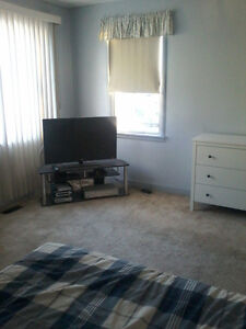 Furnished Room for Rent In Fairview