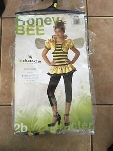 Bee costume  Kitchener / Waterloo Kitchener Area image 1