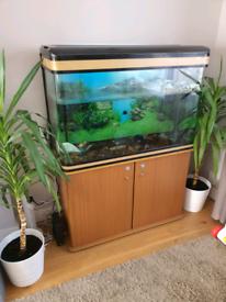 Fish tank, Terrapin tank, Aquarium Boyu 250 litre