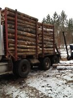 ------ 8 Ft  FIREWOOD For Sale-----