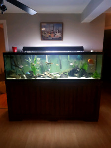 Aquarium 125 gallon a vendre