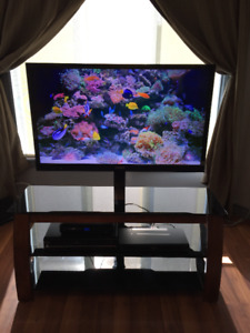 """46"""" SONY BRAVIA LCD TV and Glass Stand for Sale."""