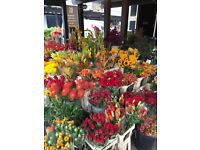 EXPERIENCED FLORIST REQUIRED, BARNES, LONDON.