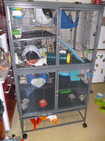 Looking for a used DCN Critter Nation Cage with Horizontal bars.