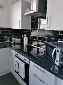 Full Apartment for short term rent