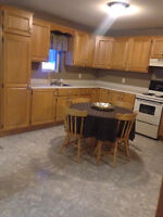 1 Bedroom Apartment Partially Furnished Available Dec 1st
