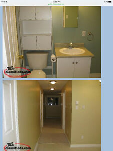 Cozy 2 Bedroom Apartment in Airport Heights St. John's Newfoundland image 1