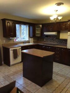 Kitchen cabinets plus Refinishing