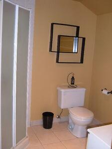 Clean large one bedroom basement apartment Kawartha Lakes Peterborough Area image 6