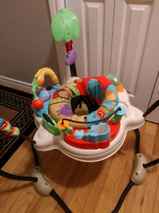 Fisherprice jumperoo for baby