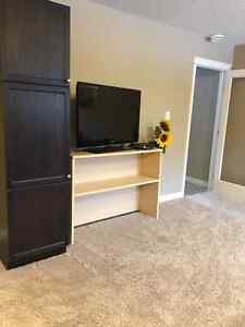 1 Bedroom Basement Suit For Rent