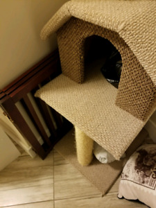 Cat house and bathroom
