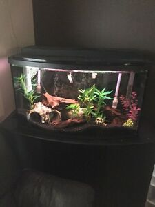 45 gallon bow front tank for sale