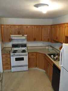 Oak Kitchen Cabinets w/ Countertop if Needed