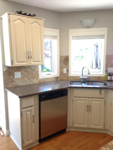 Cabinets and/or granite countertop with sink