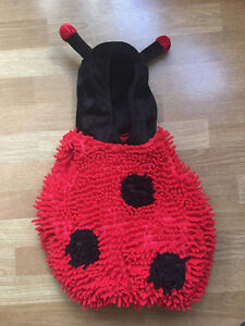 Adorable ladybug costume for toddler - size 3T