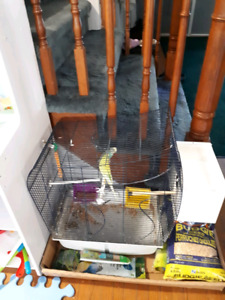 2 budgies with cage, nest, food, and treats