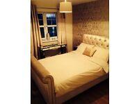 Next gold velvet double bed